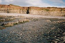 Gently sloping rock slab beach. In the distance are cliffs showing lines of striation.
