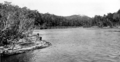 Queensland State Archives 1246 Barron River near Kuranda c 1935.png