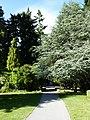 Queenstown Gardens, New Zealand (6).JPG