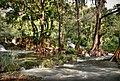 Río trampolin (3682458945).jpg