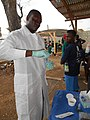 Rapid Diagnostic Testing for Cholera (31018496873).jpg