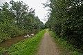 Rathuuswettern - Footweg.jpg