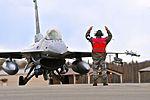 Red Flag-Alaska 15-2 takes to the skies 150505-F-DF892-131.jpg