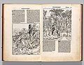 Registrum huius Operis libri cronicarum cum figuris et ymagibus ab inicio mundi MET DP358425.jpg