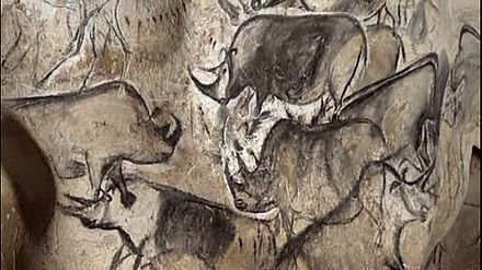An artistic depiction of a group of Rhinos, was completed in the Chauvet Cave 30,000 to 32,000 years ago. Rhinos Chauvet Cave.jpg