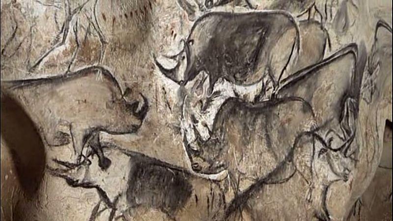 Σχέδια ρινοκέρων από το σπήλαιο Chauvet. Χρονολογία: πριν από 30.000 έως 32.000 χρόνια