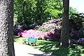 Rhododendronpark Bremen 20090513 049.JPG