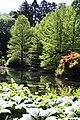 Rhododendronpark Bremen 20090513 078.JPG