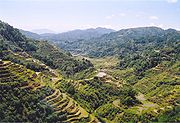 The Banaue Rice Terraces in Luzon Island, Philippines.