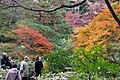 Rikugi-en 2008-11-29 (3268710246).jpg