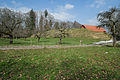 Rinkenburg Schmalegg-9483.jpg