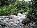 Rio Mococa - panoramio.jpg