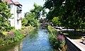 River Avon-Salisbury - geograph.org.uk - 706515.jpg