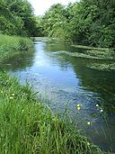 River Dun near Hungerford.jpg