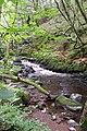 River Dwyfach, Talhenbont Hall, Lleyn Peninsula - geograph.org.uk - 110274.jpg