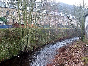 River Holme - Image: River Holme, Thongsbridge geograph.org.uk 102745