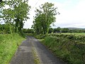 Road at Clontyseer - geograph.org.uk - 1421966.jpg