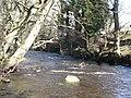 Rookhope Burn (2) - geograph.org.uk - 728437.jpg
