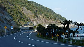 Route220 Nichinan Coast 01.JPG