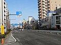 Route 6 Tokyo Metoro Katsushika Ward 1.jpg