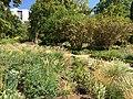 Royal Botanical Garden in Madrid 03.jpg
