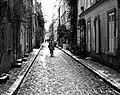 Rue des Thermopyles Paris 2010.jpg