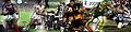 Rugby league 2011.jpg