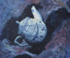Russell's Teapot.png