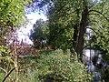 Rzeka zgłowiączka w miejscowości Brześć Kujawski - panoramio (2).jpg