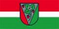 Salas novada karogs apstiprinaatais.jpg
