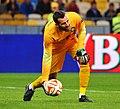 Samir Handanovič Inter 2014.jpg