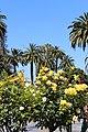 Santa Clara, CA USA - Santa Clara University - panoramio (16).jpg