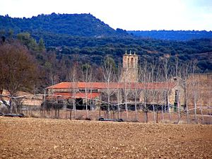 A group of stone buildings seen in the distance, across a plowed field and through a row of bare wintry trees. The buildings have red tile roofs. A stone bell tower rises amid the group.