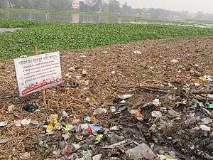 Water pollution in India - Image: Santragachi Lake Howrah 2012 01 26 1594