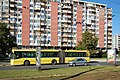 Sarajevo Bus-416 Line-31e 2011-10-16.jpg