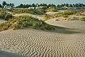 Sealine resort in Mesaieed.jpg