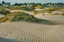 Sealine Beach Resort Qatar Careers