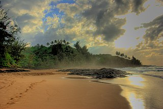 beach on the north shore of the island of Kauai in Hawaii
