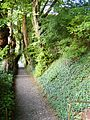 Secret way to Käppele, Würzburg, 25 Aug 2010 - panoramio.jpg