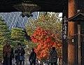 Seiryoji temple (8278708273).jpg