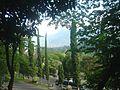 Selecta - panoramio (1).jpg