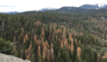 Sequoia National Park (27270780005).png
