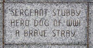 Sergeant Stubby - Sergeant Stubby's brick at the Liberty Memorial