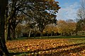 Shaftesbury Park, Carrickfergus - geograph.org.uk - 278538.jpg