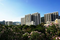 Shek Wai Kok Estate (revised).jpg