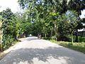 Sherpur Upazila, Bangladesh - panoramio (4).jpg