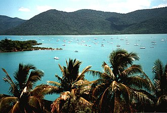 Shute Harbour - View of vessels in Shute Harbour, 2000