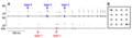 Signaux d'écholocation de Barbastella, spectrogrammes et oscillogrammes des signaux d'écholocation émis.png