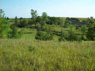 Battle of Wood Lake - Location of the Sioux positions along the bluffs north of the Minnesota Volunteers' camp