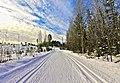 Ski track Ampujien maja to Touruvuori.jpg